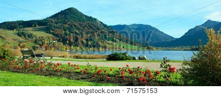 Picturesque Lakeside Promenade, Lake Schliersee, With Benches And Rose Flowerbeds