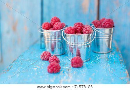 Ripe Raspberry In A Pail