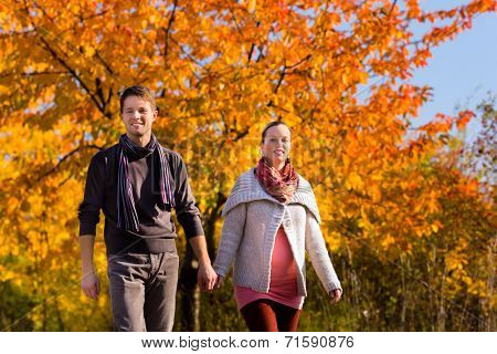 Young family or couple or man and pregnant woman walking through colorful trees in fall or autumn