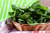 image of sorrel  - Fresh sorrel in round wicker basket on napkin on wooden background - JPG
