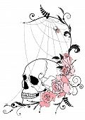 image of spiderwebs  - vector illustration with flowers of roses skull and spiderweb - JPG