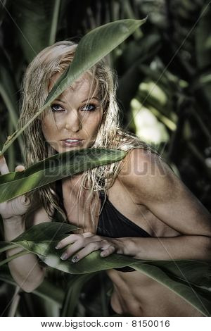 in jungle