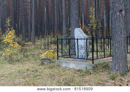 Grave In The Wood