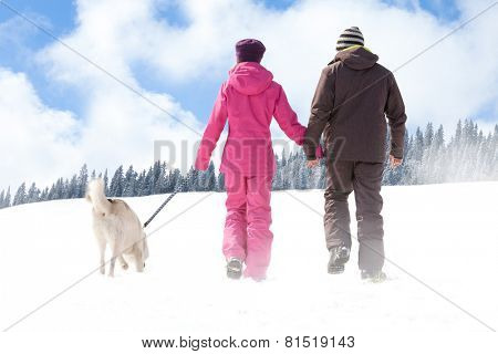 Man and woman walking with his dog in wintertime, back view