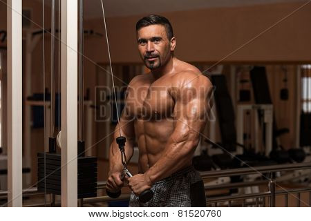 Bodybuilder Exercising Triceps