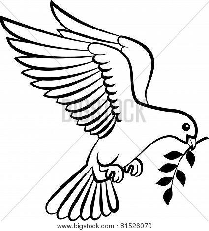 Cartoon Dove birds logo for peace concept and wedding design