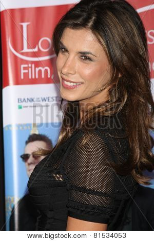LOS ANGELES - FEB 23:  Elisabetta Canalis at the LA Italia Opening Night at TCL Chinese 6 Theaters on February 23, 2014 in Los Angeles, CA