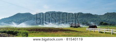 Panorama Of Corn Farm Is Fed By Water Spray