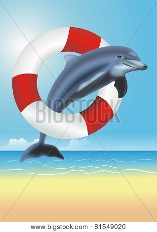 Lifesaving Dolphin Illustration