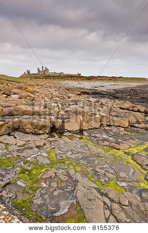 Dunstanburgh Castle And Seaweed