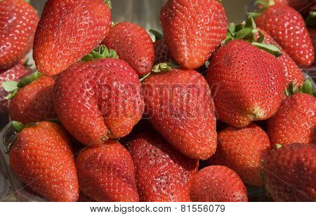 Large  Strawberry On A Market.