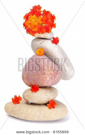 Zen Stones And Flowers