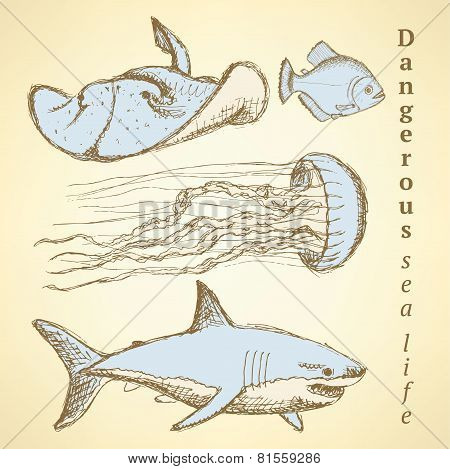 Sketch Sea Creatures In Vintage Style