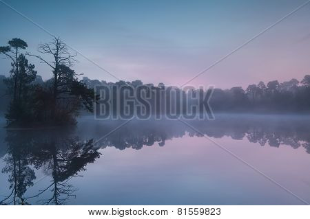 Serene Sunrise On Forest Lake