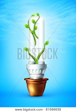 Luminous Bulb With Plant