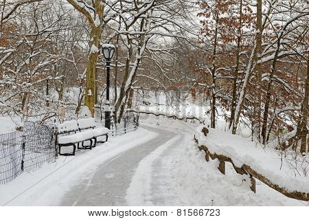 Central Park in the snow, Manhattan, New York
