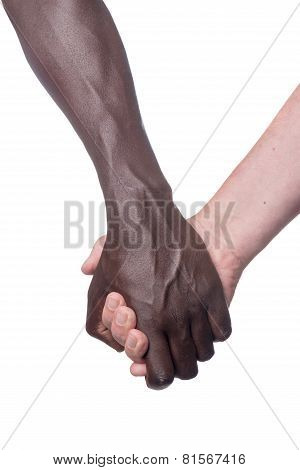 Two Multi Racial Hands