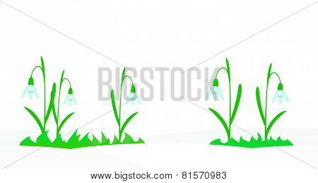 Seamless illustration with snowdrops.
