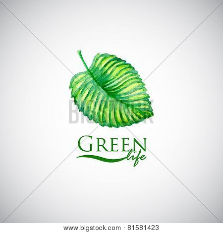 Green life watercolor leaf like logo icon
