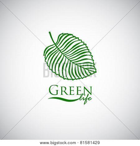 Green life doodle leaf like logo icon