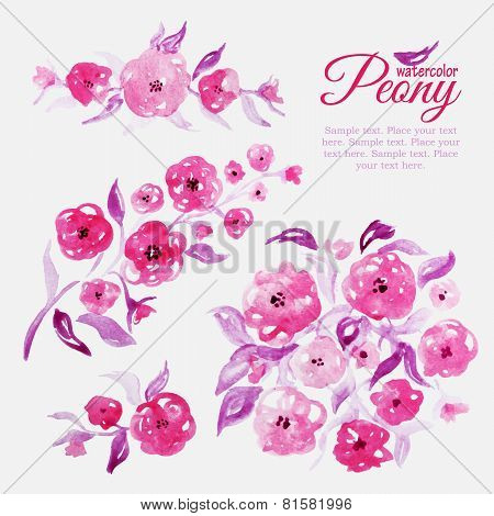 Set of watercolor floral elements for design