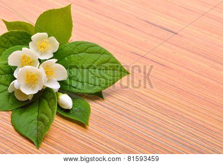 Jasmine Flower Bouquet On Wood