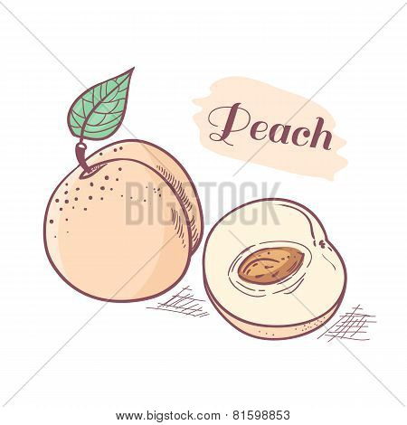 Hand Drawn Peach With Slice