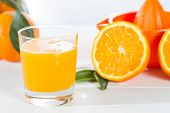 picture of valencia-orange  - Natural juice oranges from Valencia in Spain - JPG