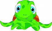 stock photo of terrapin turtle  - vector illustration of cute sea turtle cartoon - JPG