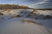 stock photo of guadalupe  - Salt basin dunes are made of Gypsum grains which are bright-white dunes in the western part of Guadalupe Mountains National Park.