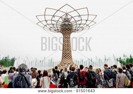 The Tree Of Life At Expo Milano 2015