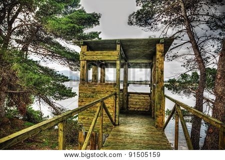 Wooden Bird Watching Cabin In Hdr