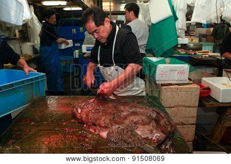 Fresh fish main cut by professional Japanese fish handler