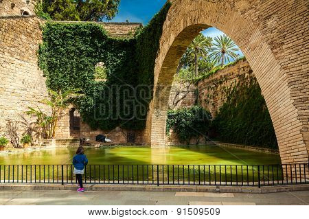 The Pond Near Cathedral Church In Palma