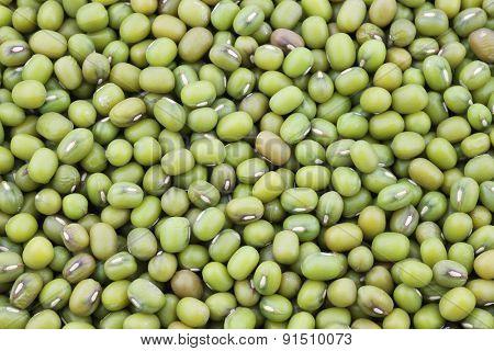 Mungo beans background (Vigna radiata)