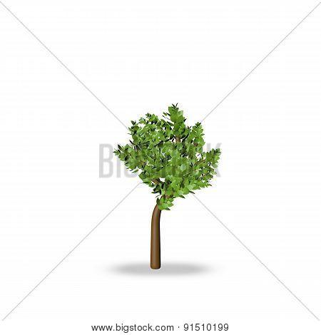 Tree 3d render