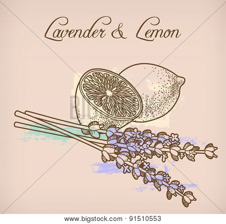 Lemon And Lavender Flowers