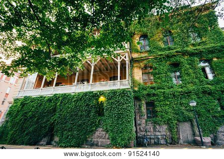 Wall Of House With Window Covered With Ivy