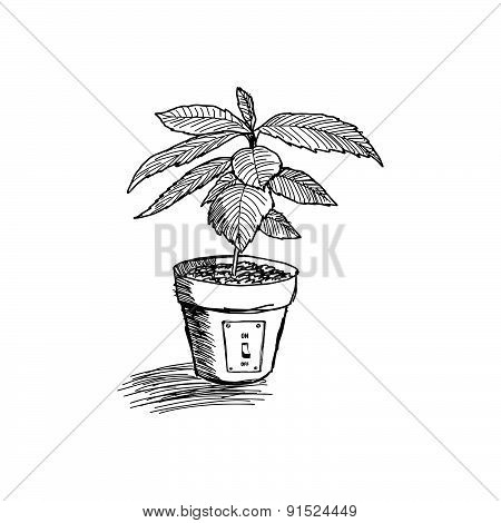 Doodles Sketch Of Tree Growing In Pot
