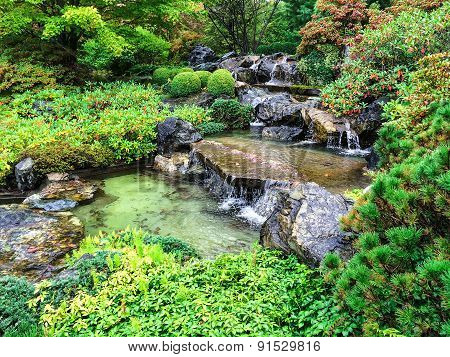 Japanese Garden In Early Autumn