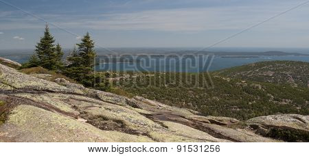 Pine Trees On Rocky Coastal Mountain