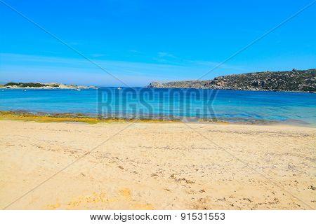 Yellow Shore In Capo Testa