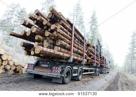 Timber Truck On Swedish Dirt Road