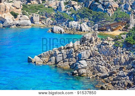 Rocks And Plants In Capo Testa Coastline