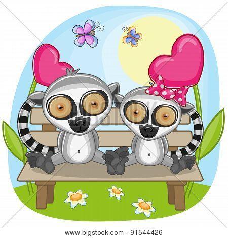Lovers Lemurs