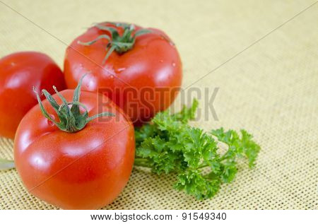 Fresh Tomato And Parsley On A Table