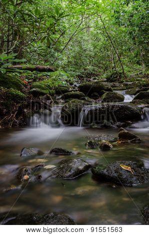 A Creek Near Blood Mountain In Georgia