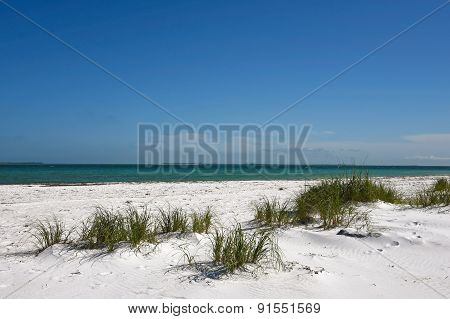 Beautiful Florida Coastline