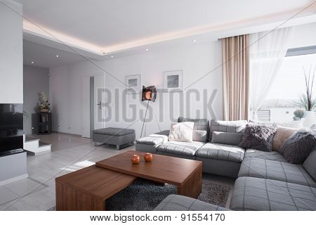 Contemporary Designed Room