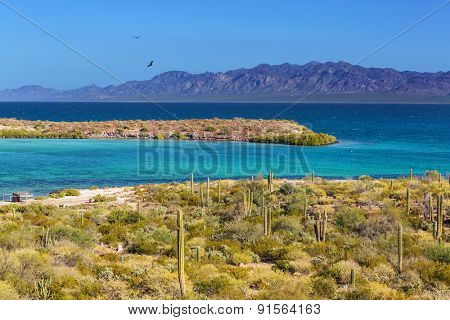 tropical beach on Caribbean sea,Mexico